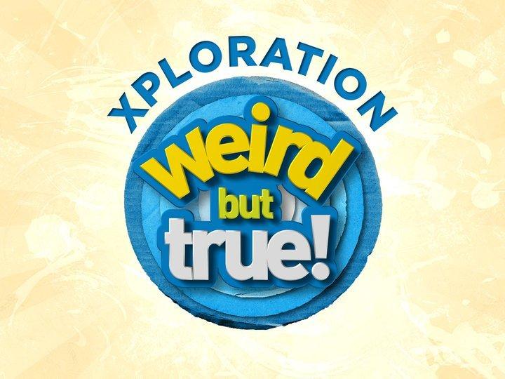 Xploration Weird but True