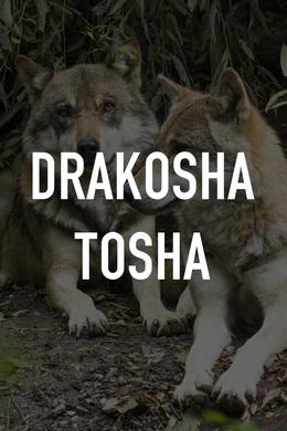 Drakosha Tosha