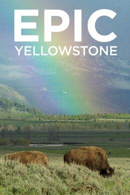 Epic Yellowstone