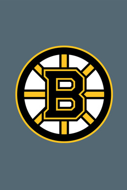 History of the Boston Bruins