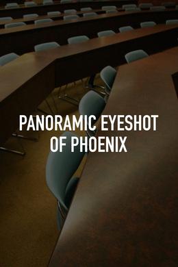 Panoramic Eyeshot of Phoenix