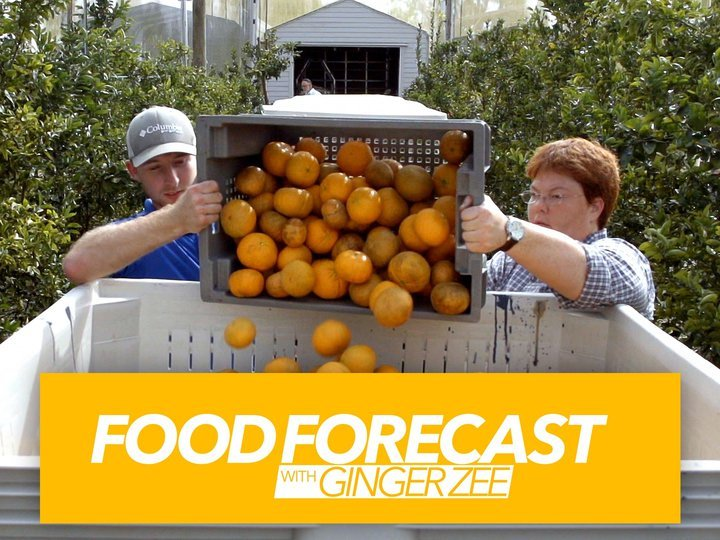 Food Forecast With Ginger Zee