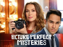 Picture Perfect Mysteries