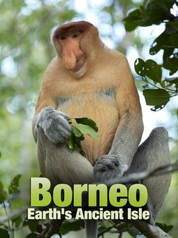 Borneo - Earth's Ancient Isle