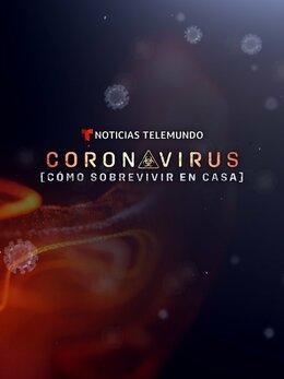 Coronavirus: cómo sobrevivir en casa