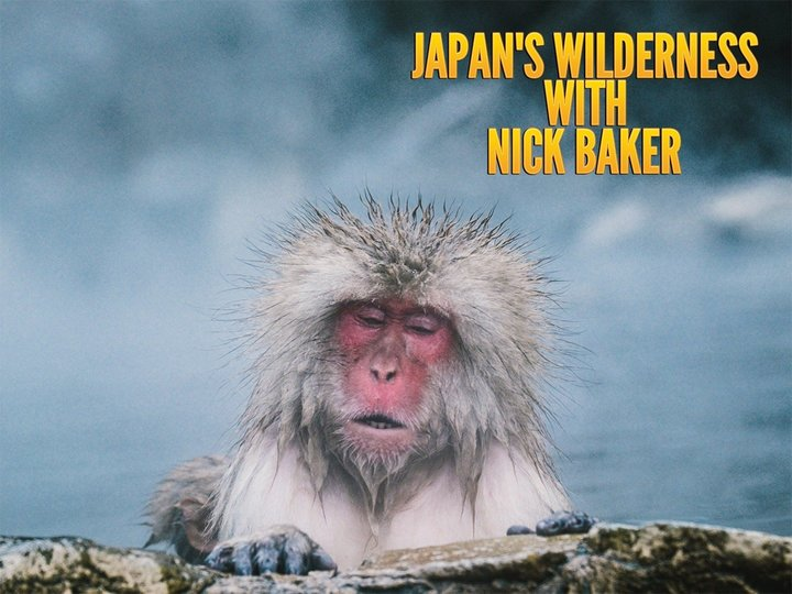 Japan's Wilderness With Nick Baker