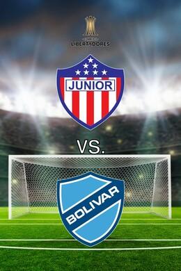 Copa Libertadores Soccer