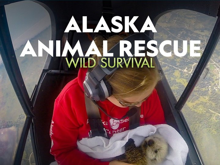 Alaska Animal Rescue: Wild Survival