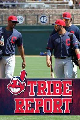 Tribe Report